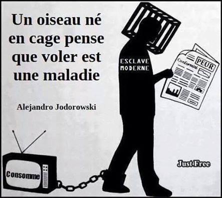 * Cage (Jodorowski)