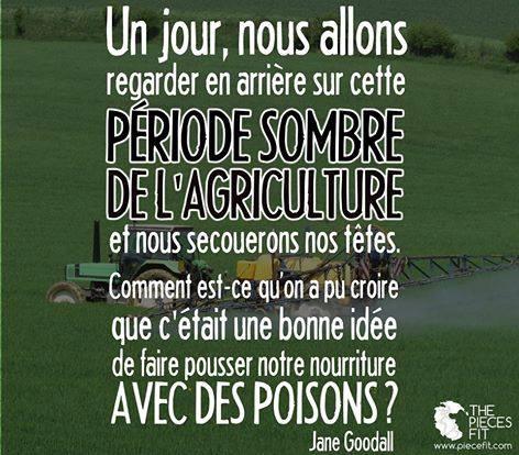 *( Comment a t'on pu croire que c'était bien de faire pousser notre nourriture avec des poisons ?
