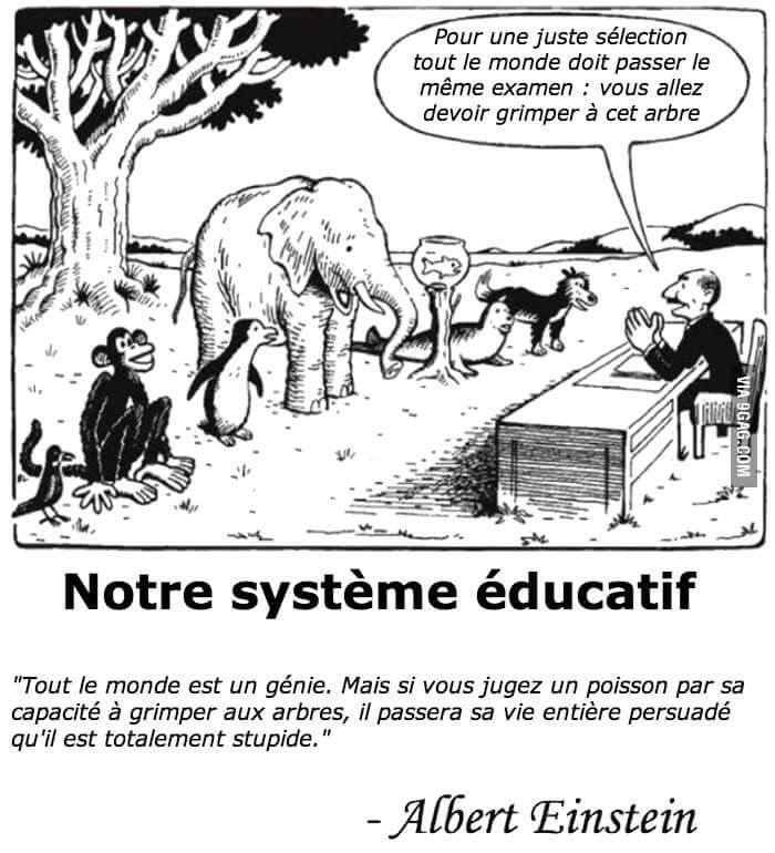 *( Education (Albet Einstein)