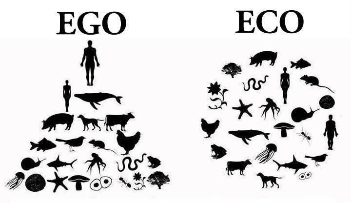 *( Ego vs eco