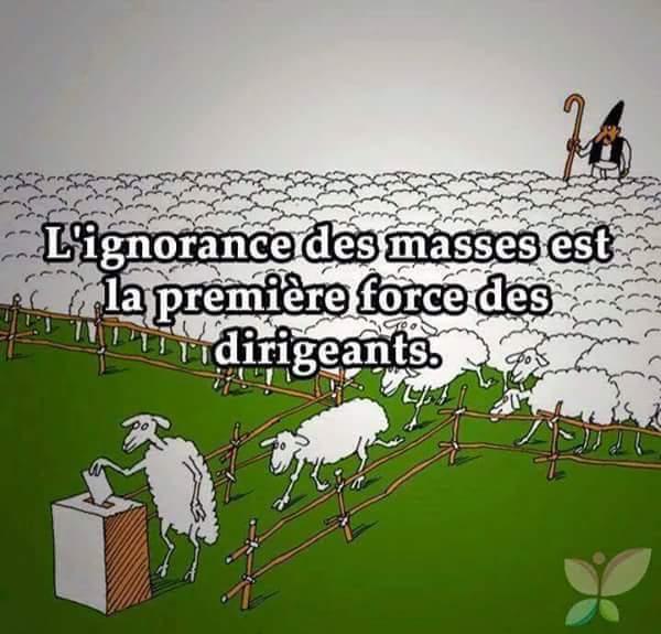 * L'ignorance des masses est la première force des dirigeants