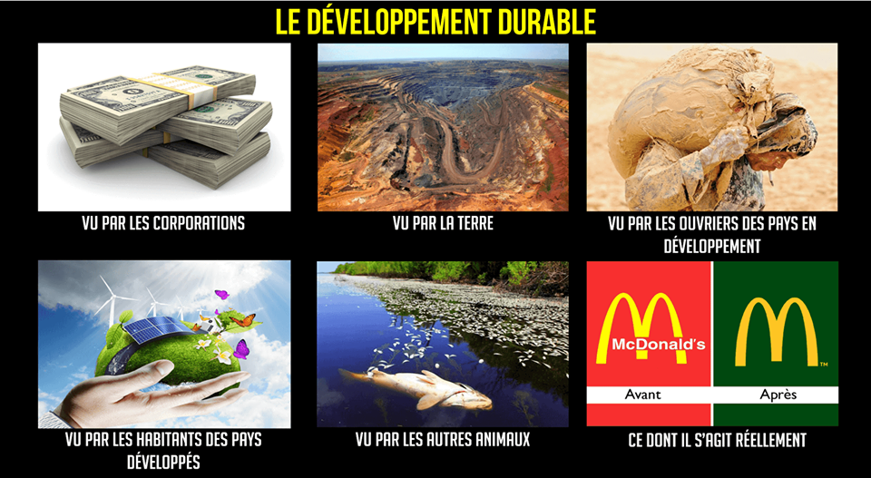 *( Mot récupourri développement durable