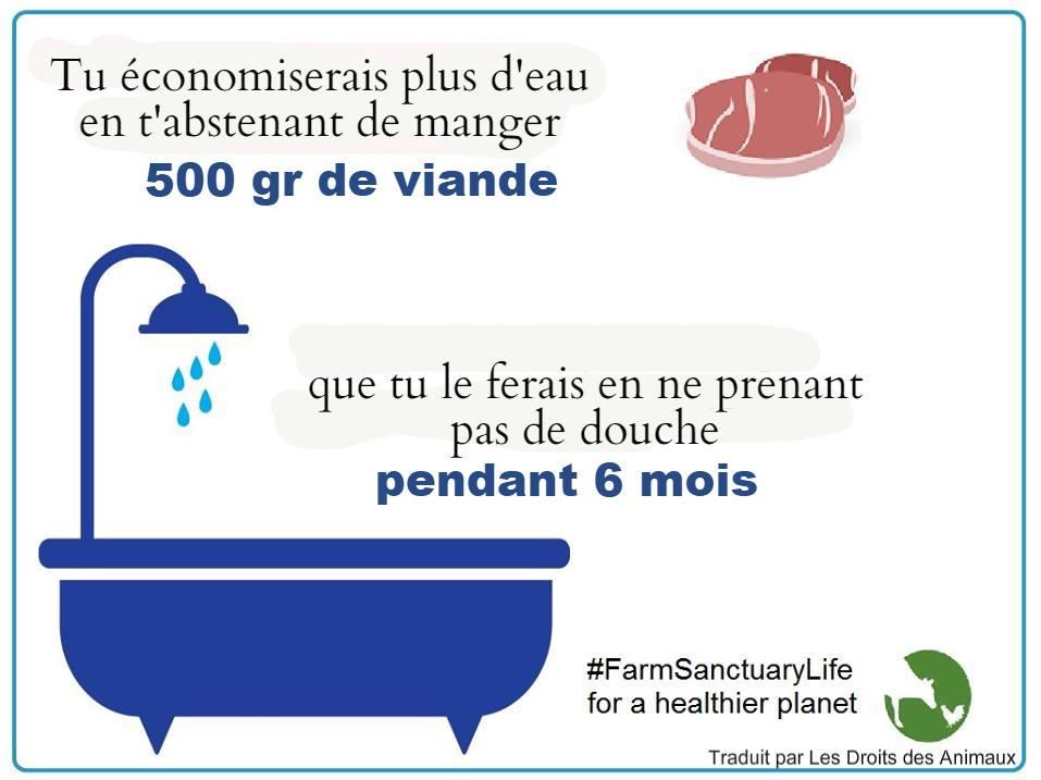 * Tu économises + d'eau en t'abstenant de manger 500 gr de viande que sans douche pendant 6 mois